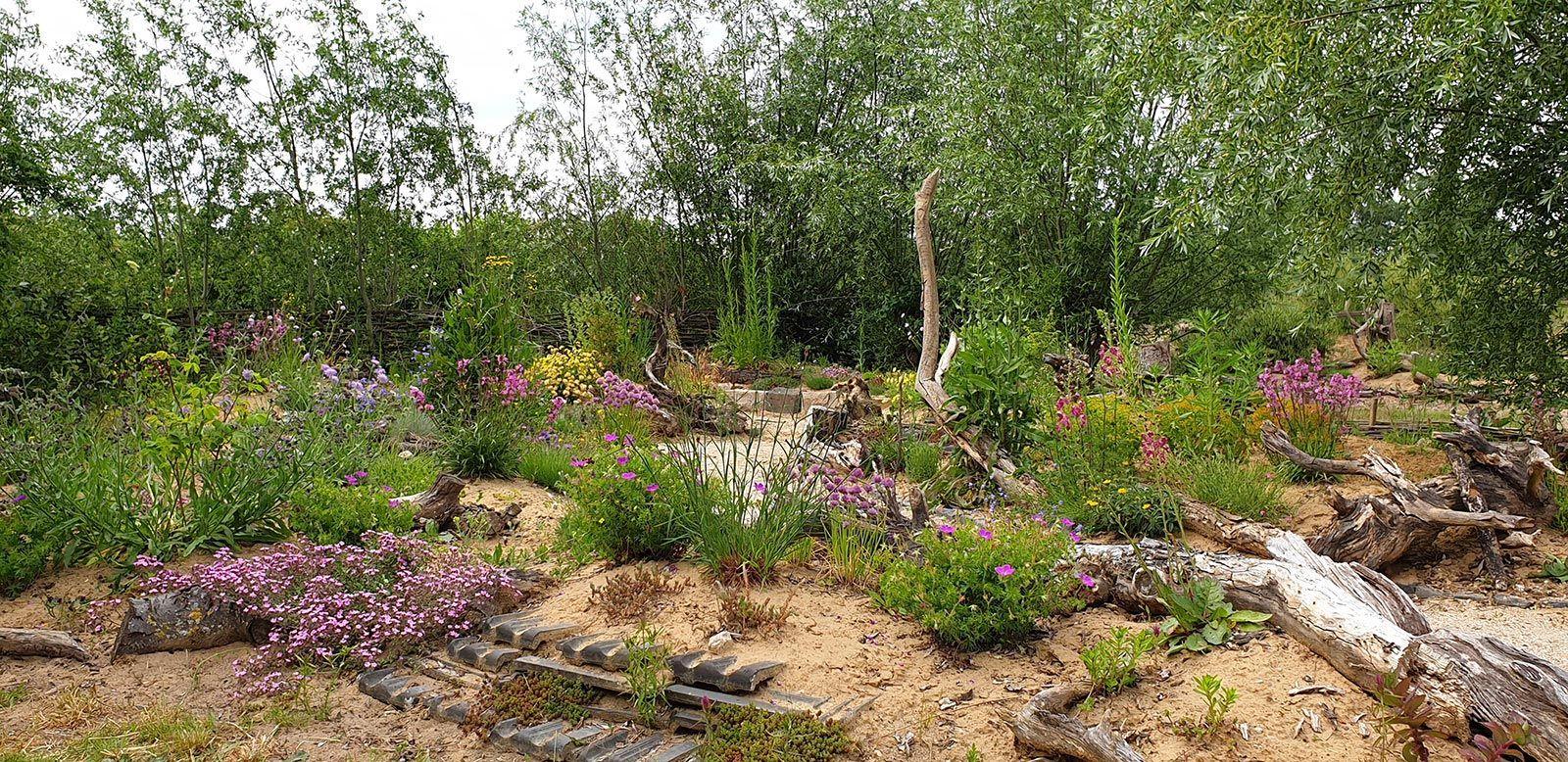Spektakuläres Sandbeet in der Naturarena Wesel-Bislich
